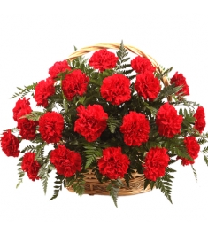 Easter gifts send to philippines 1 dozen carnation basket to philippines negle Images