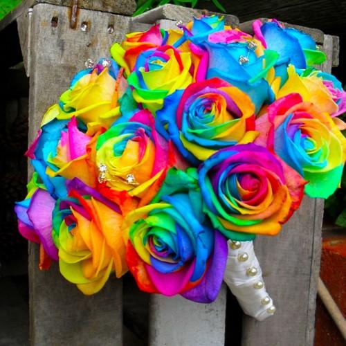 Send Rainbow Rose 1 Dozen to Philippines,Philippinesrose.com