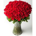 5 dozen roses online philippines
