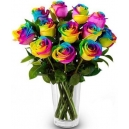 online rainbow roses philippines