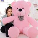 Giant Teddy
