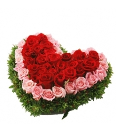 60 Heart shape Mixed Roses