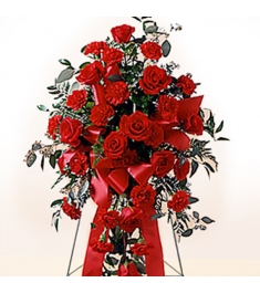 Red Carnations and Roses  Send to Philippines