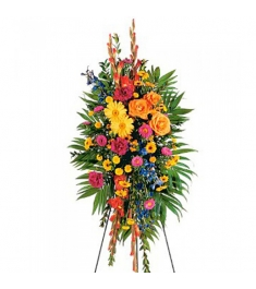 Carnations,Chrysanthemums,Gerberas,Asters and Roses  Send to Philippines