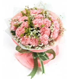 17 Pink Carnations with Baby's Breath