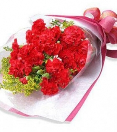 19 Red Carnations,Solidago and Greency