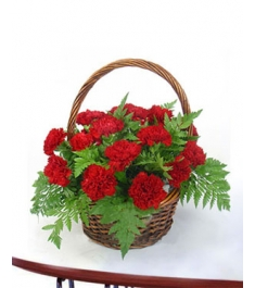 24 red carnations online to philippines