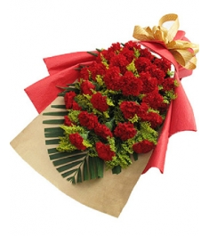 21 Red Carnations