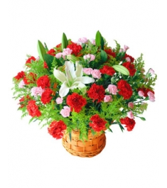 36 Red Carnations and 2 Perfume White lilies