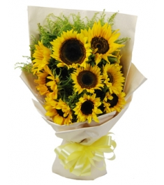 10 Sunflowers Hand Bouquet with Gerberas