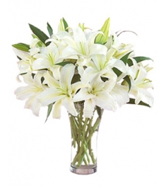 9 Perfume White lilies and Green leaves