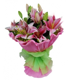 6 Pink Perfume lilies