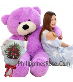 12 red rose bouquet with giant bear to philippines
