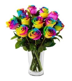 Send Rainbow Rose Vase to Philippines