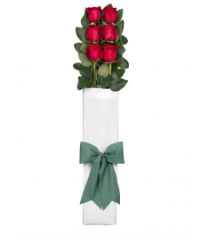 Send 6 pcs Red Roses to Philippines
