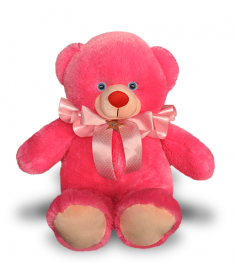 Pink Teddy bear to Philippines