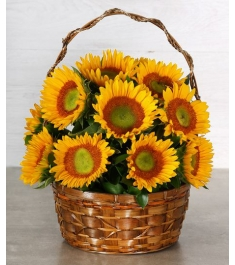 12 sunflowers tin basket to philippines