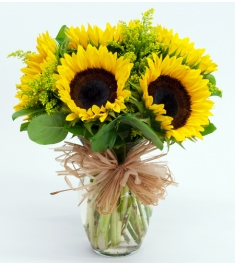 six sunflowers vase to philippines