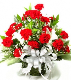 20 Premium Carnations and 2 White long lilies
