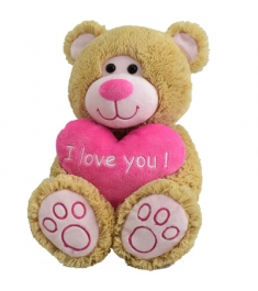 Send brown teddy with heart to Philippines