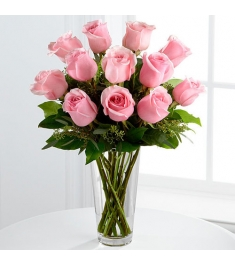 12 Pink Ecuadorian Roses Send to Philippines