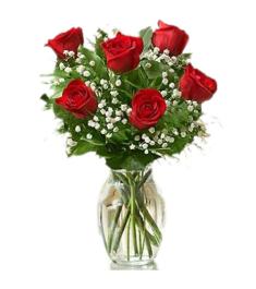 6 Ecuadorian Red Roses in Vase to Philippines