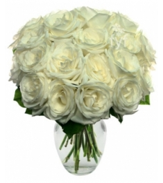 18 White Roses Send to Philippines