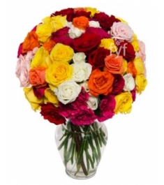 36 Blooms of Roses Delivery to Philippines