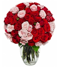 100 Blooms of Pink and Red Roses Delivery to Philippines