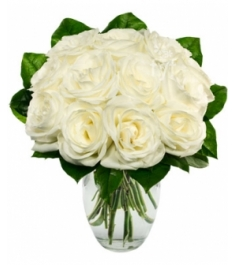 One Dozen White Roses Send to Philippines,Roses to Philippines