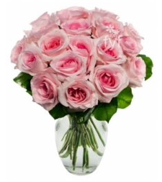 18 Light Pink Roses Send to Philippines