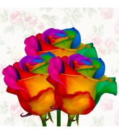 Rainbow Rose 3pcs Send to Philippines