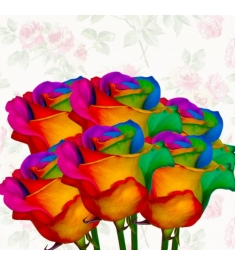 Rainbow Rose 6pcs Send to Philippines