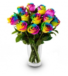 12 Rainbow Roses in Vase to Philippines