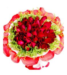 36 Red Rose