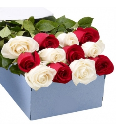 One Dozen Red & White Roses in a Box Delivery to Philippines