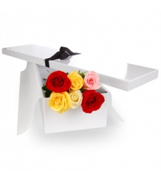 6 Stems Four Shades of Roses in a Box Delivery to Philippines,Roses Box to Philippines