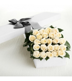 2 Dozen White Roses in a Box Delivery to Philippines