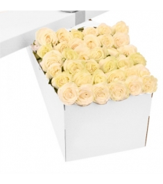 3 Dozen White Roses in a Box Online Order to Philippines