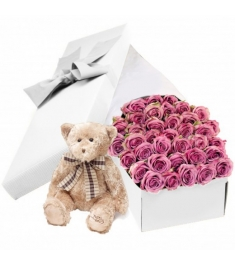 Teddy Bear and 36 Pink Roses in a Box Online Order to Philippines