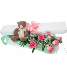 Teddy Bear and 6 Pink Roses in a Box Online Order to Philippines
