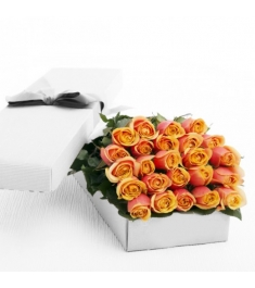 Two Dozen Orange Blend Roses in a Box Online Order to Philippines