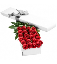 2 Dozen Premium Red Roses in a Box Send to Philippines