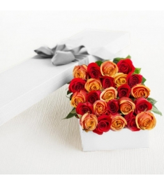 2 Dozen Red and Orange Roses in a Box Send to Philippines