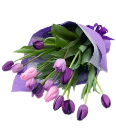 15 purple tulip in bouquet to philippines