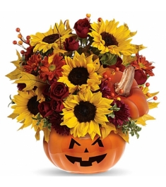 Pumpkin Halloween Sunflowers