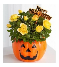 Halloween Flowers Delivery To Philippines