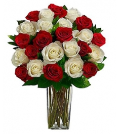 24 Red & White Roses Send to Philippines