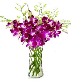 8pcs. Purple Orchids in a Vase
