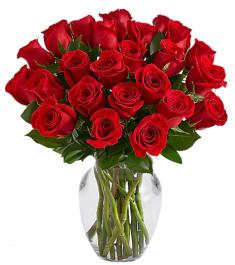24 Premium Long Stem Red Roses Send to Philippines